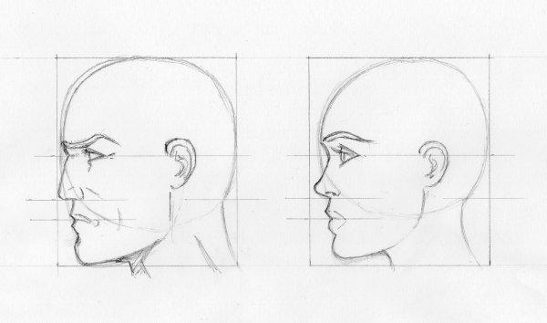 Croquis visages de profil blog dessins a benfares - Profil dessin ...
